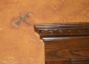 A Dragonfly Over the Door
